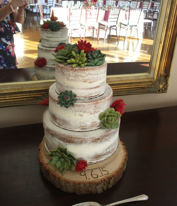 Naked Rustic Succulents Cake