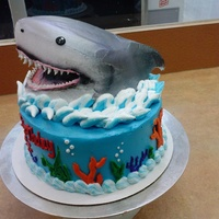 Shark! This is a white cake with buttercream icing. The shark is a white cake as well. It is iced in buttercream. All the decorations are...