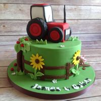 Farm Themed Cake.. A tractor on the cake for a farm themed party. Tractor is made out of RKT..