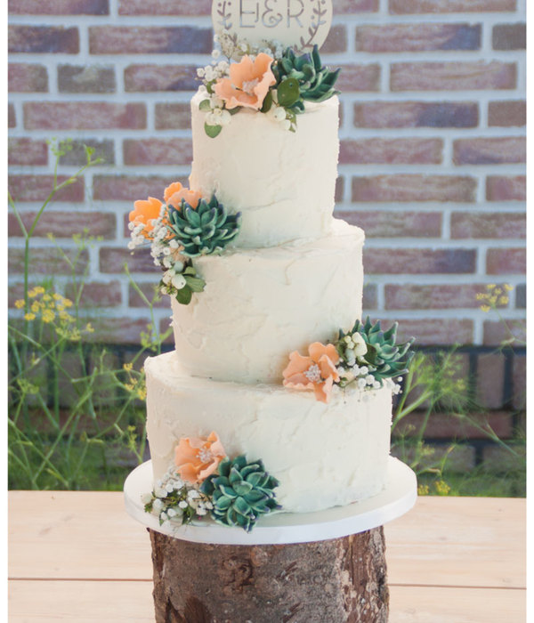 Rustic Weddingcake With Succulents