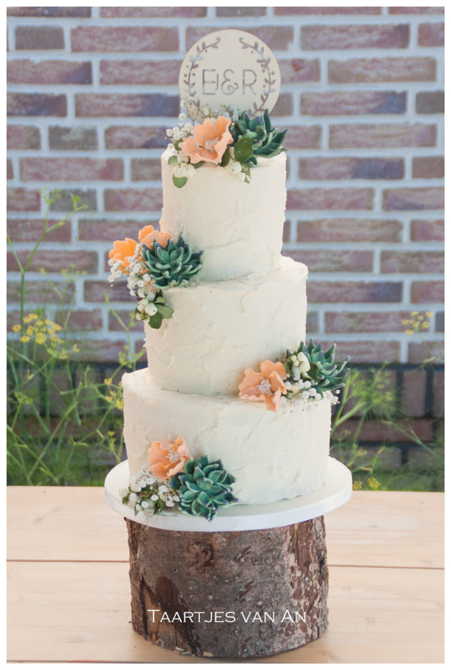 Rustic Weddingcake With Succulents on Cake Central