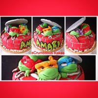 Ninja Turtles Gluten free chocolate cake for my lil cousins 4th birthday earlier this year.