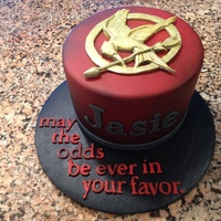 Mockingjay  This is a small cake I made for my daughter's 11th birthday. She is a major Hunger Games fan, so this is what she got. Chocolate cake...