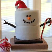 S'mores Christmas Birthday Cake Birthday cake for my daughter's Birthday/Christmas Party.