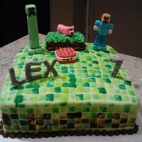 Minecraft Cake With Creeper MINECRAFT FONDANT CAKE WITH FONDANT TOPPERS. PIXELS ARE STAMPED WITH FOOD GEL.