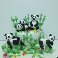 Panda Lover having fun with panda figurines