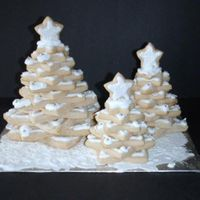 Decorated Sugar Cookie Snow Covered Forest NFSC with royal icing