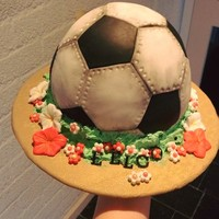 Soccer/football Cake I made this cake with 2 half sphere moulds. I wish it was rounder at the bottom, but the oreo filling was so heavy the bottom layers just...
