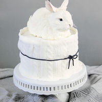 Snow Hare Cake This is the cake I made for my last birthday. If you like to have a tutorial for the snow hare you can find it here: https://www.facebook....