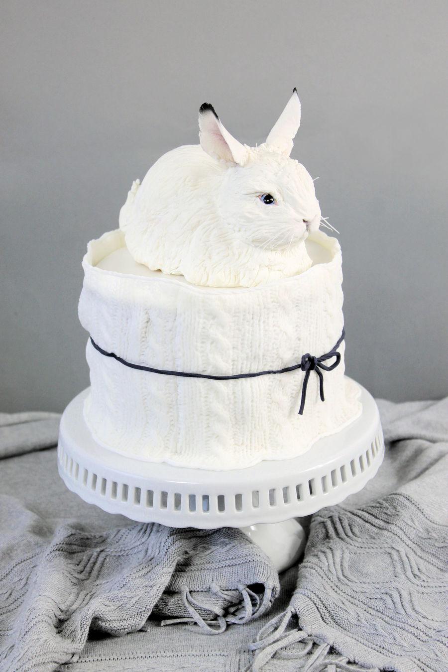 Snow Hare Cake Cakecentral Com