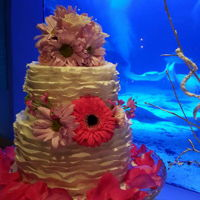 Aquarium Bridal Show Fondant ruffled two tiered wedding cake I did for display at our local bridal show. Beautiful setting although the lighting as a little...