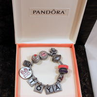 Pandora Bracelet Box Cake For Toya's 31st birthday. Charms created to celebrate her hobbies (photography, fashionista, favorite colors), job (GM), and family (...