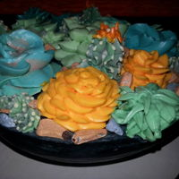 Succulent Cake 2 layer yellow butter cake with Swiss Meringue succulents