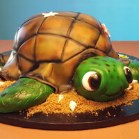 Turtle Birthday Turtle, Sand, Sea Shells, Sea Turtle, Fondant,