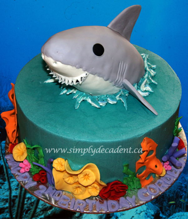 3D Shark Birthday Cake With Handmade Fondant Coral And Sea...