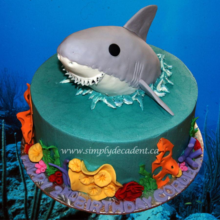 D Shark Birthday Cakes