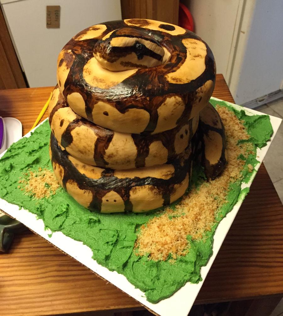 Ball Python Snake Cakecentral Com
