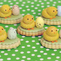 3D Easter Chick Cookies 3D chick cookies on a shortbread cookie base. The chicks were rolled in tinted desiccated coconut before baking. Beaks, eyes, and feet were...