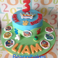 Paw Patrol   Buttermilk chocolate sponge cake with fudge filling