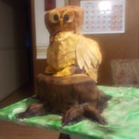 Hooter Sculpted cake