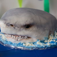 "Shark Cake ""We're gonna need a bigger knife"" check out the making of this cake on our facebook page https://www.facebook.com/..."