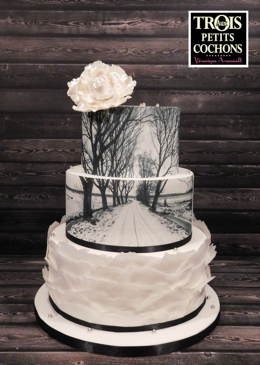 Winter Wedding Cake on Cake Central