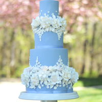 A Cinderella Wedding I created this cake for a Cinderella inspired wedding in DC. The cake features the pantone color of the year, serenity blue - which I color...