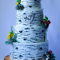 Birchwood Wedding Cake At Bamboo Gallery The Birchwood pattern was created using a stencil by Evil Cake Genius. Love it! I paneled the cake. Succulents and flowers made with...