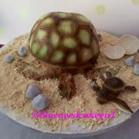 Mommy Turtle With Baby Mommy is made of cake, with a vanilla filling and baby is made of fondant.