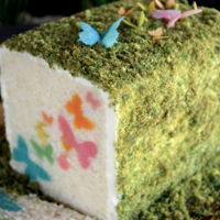 Surprise Inside Butterflies White chocolate cream cheese cake surrounding pastel butterflies. Moss cake crumbs with wafer paper butterflies.