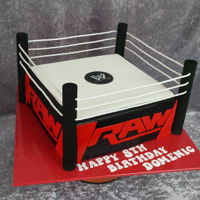 "Wrestling Ring copied from the birthday boy's favourite toy. 10"" square mud cake, with the letters all hand cut."