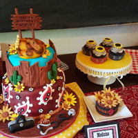 Dr. Quinn Medicine Woman Cake This cake was inspired by the show, Dr. Quinn Medicine Woman. It features a fondant items such as a snake, wood planks, cactus, doctor bag...