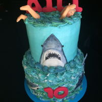 Jaws Cake Buttercream frosting, fondant accents.