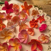 Mmm, Smell The Plumeria - So Sweet! For an upcoming cake. These gumpaste flowers were colored according to photos I found online of actual plumeria/fangipani flowers, as I...