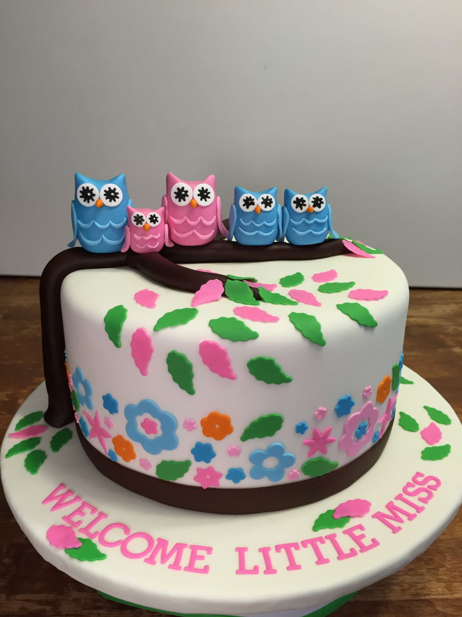 Owl Baby Shower Cake on Cake Central