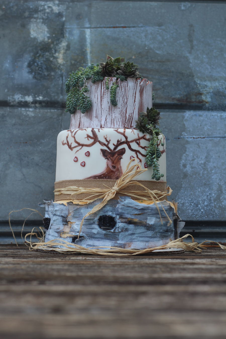 Succulent Love on Cake Central