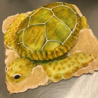 Buttercream Sea Turtle Cake I made this one out of a egg shaped single layer cake, iced it in white buttercream and airbrushed it.