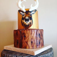 Hunters Delight Cake The Deer Cake! I loved Making this Cake. Created a stencil with my Cricut to airbrush the black outline and then airbrushed the rest of the...