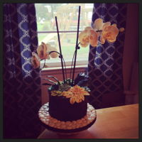Potted Orchid Cake This was my entry for the decorated cakes competition for the 2015 NC State Fair! I loved making the moth orchids & attempting the...