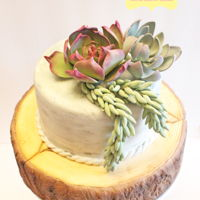 Succulent Wood Slab Cake A wood slab cake with a small 6 tier cake coloured to resemble cement with three varieties of succulents on top. The top tier was a last...