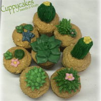 Succulents And Cactus Cupcakes   Succulents and Cactus cupcakes