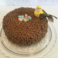 Birds Nest Key Lime cake with cream cheese frosting.