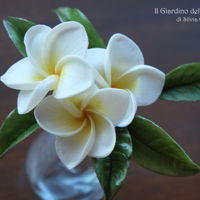 Plumeria Flowers Sugar paste Plumeria flowers. In my town Palermo, in Sicily, there are lots of plumeria trees that in summer are full of flowers! The...