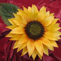 Sunflower   Gumpaste Sunflower
