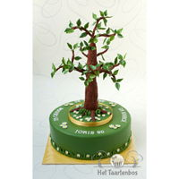Tree Cake Cake for a family party. Their familyname is tree Boom, which means tree