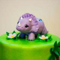 Girl Dino Birthday Cake Girl, dino birthday cake by 2bi Cakes. https://www.facebook.com/2bicakes/