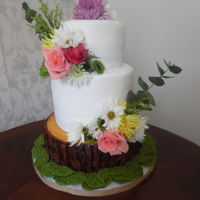 Organic Harmony  Finally, an order with a 'slice' of tree...(not a stump?) Happy to get to do this cake! Was provided with a pic of a cake...