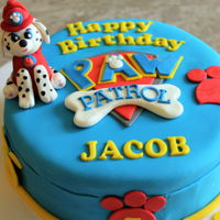 Paw Patrol Made this for a sweet little boy who loves Paw Patrol!!