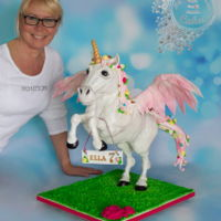 Pegasus And Unicorn Gravity Cake All edible ;) Vanilla sponge cake with strawberry cream