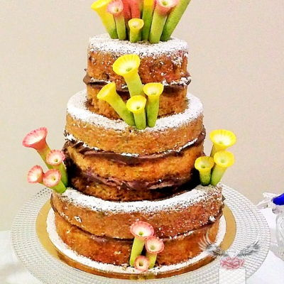 Unusual Naked Cake